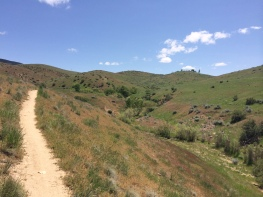 The open trail.