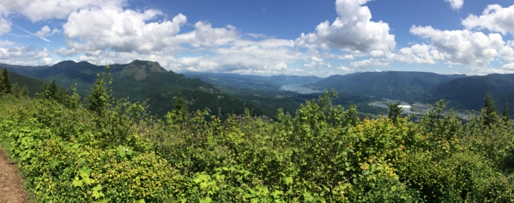 Panoramic view from the top of Hamilton Mountain with a clear shot of Table Mountain and Bonneville Dam.
