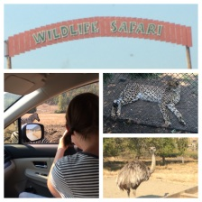 Wildlife Safari (Winston, OR)