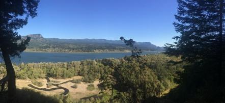 Columbia River Gorge (Oregon side)