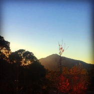 Mt. Tamalpais view from Larkspur, CA